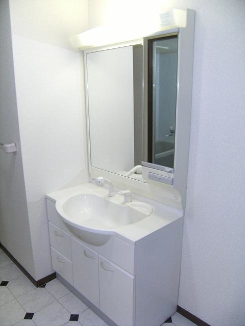 ビ・ザ・ビ・ランド(ペット共生) / 301号室洗面所