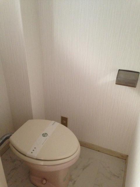 綾の家 / S-208号室トイレ