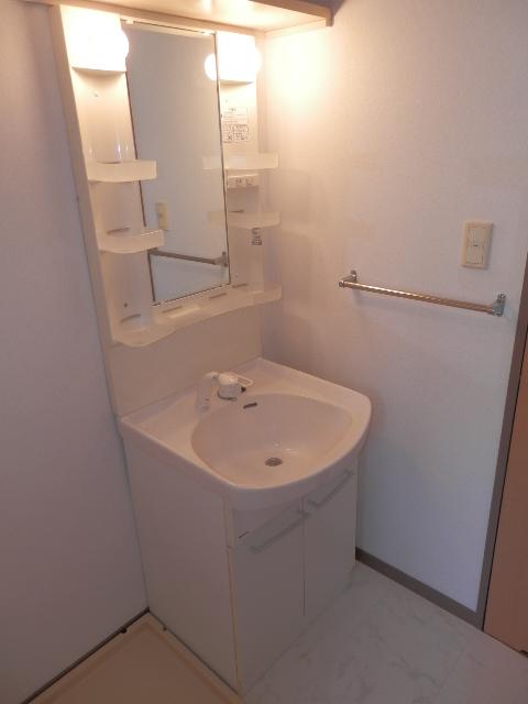 エクセレント塩浜 / 303号室洗面所