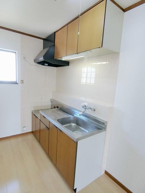 シャイニープラッツ(ペット可) / A202号室キッチン