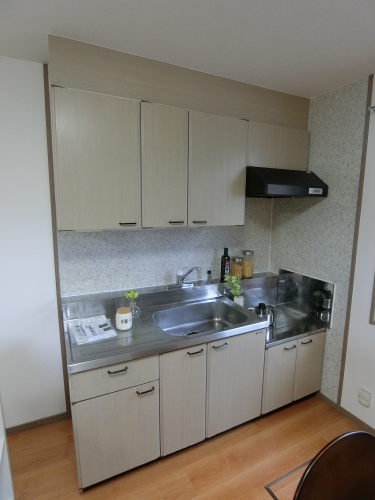 メロディハイツ大池 / 101号室キッチン