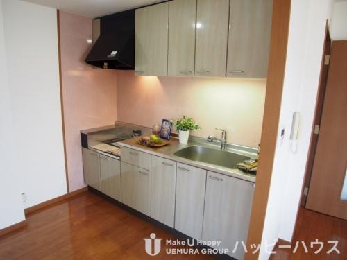 サンリバー博多南Ⅱ / 405号室キッチン