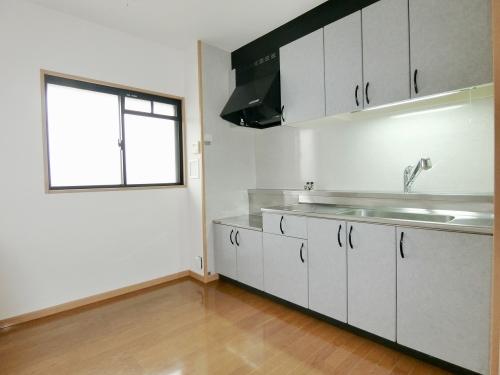 ピア白水ヶ丘 / 305号室キッチン