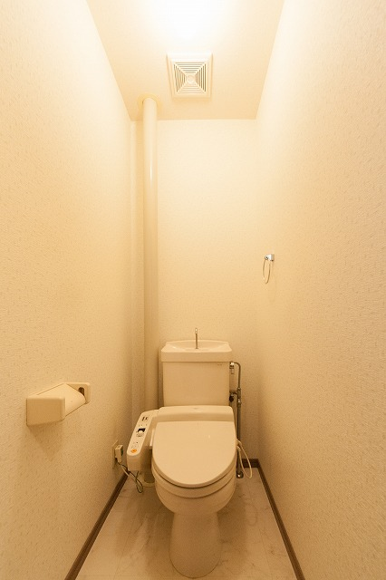 ティアラ老司南 / B-202号室トイレ