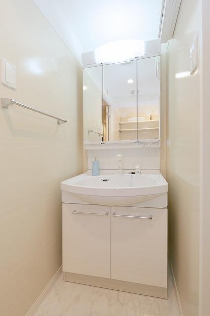 フルラージュ / 501号室洗面所