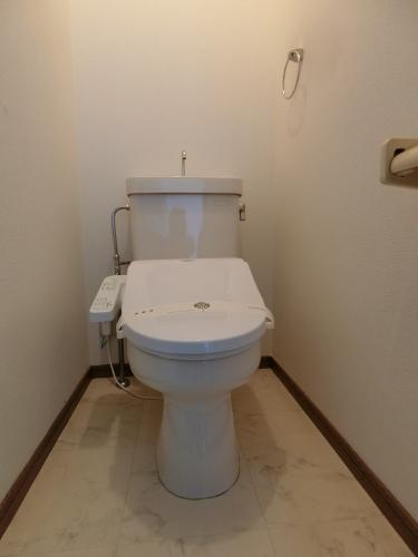メロディハイツ大池 / 101号室トイレ