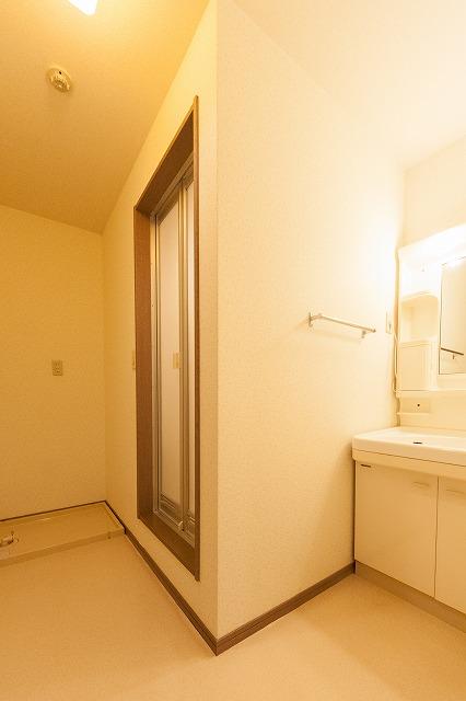 ティアラ老司南 / B-202号室洗面所