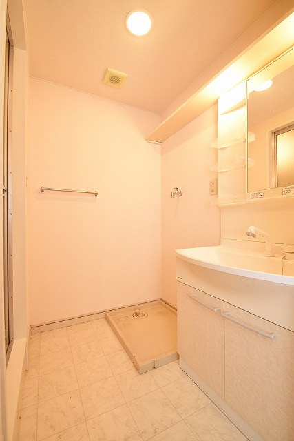 アメニティ12 / 203号室洗面所