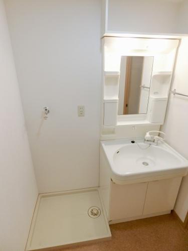 ピア白水ヶ丘 / 305号室洗面所
