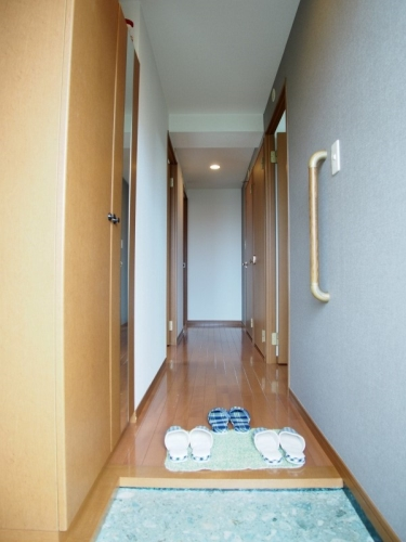 サンリバー博多南Ⅱ / 405号室玄関