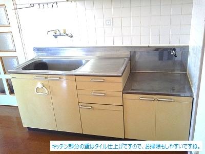 サンライズ荒木駅前 / 401号室キッチン