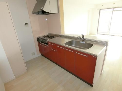 ステラコート宿 / 203号室キッチン