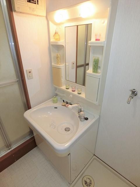 プレアデス小郡 / 401号室洗面所