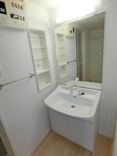 ステラコート宿 / 203号室洗面所