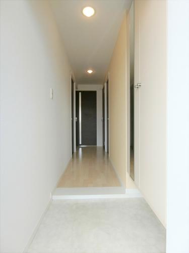 ステラコート宿 / 203号室玄関