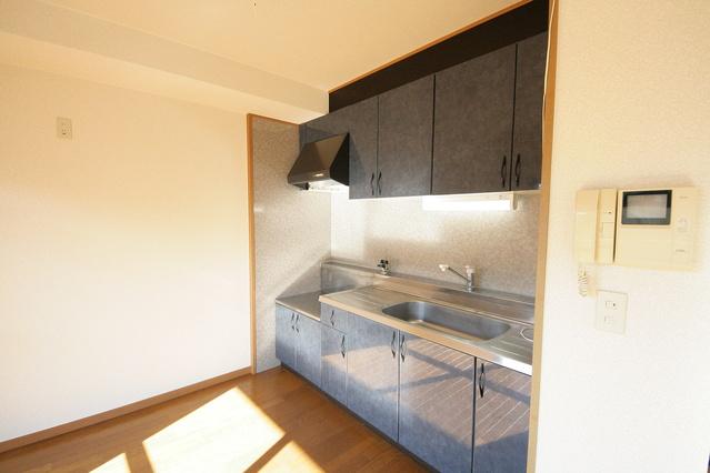 カサグランデ / 2-303号室キッチン