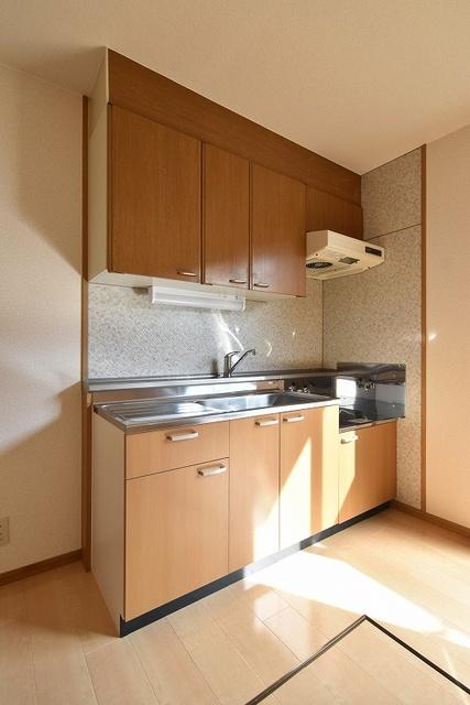 ラヴィタ城南A / 105号室キッチン