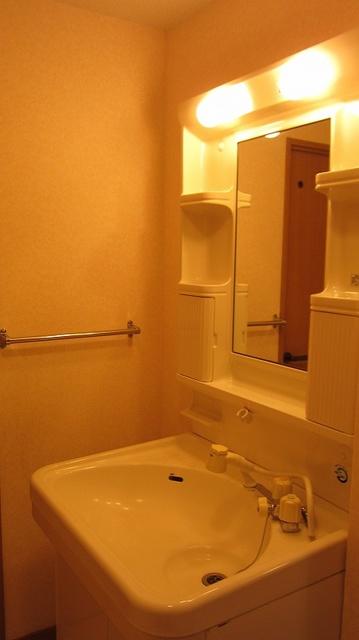 リバーパーク梅林2 / 202号室洗面所