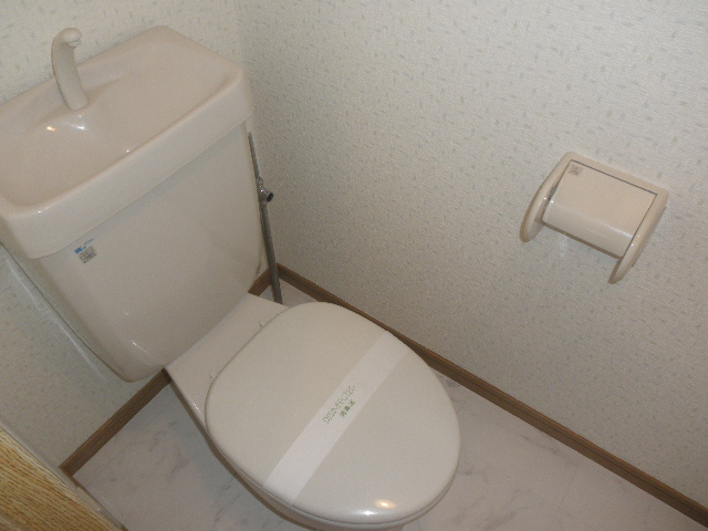 グレイス七隈 / 302号室トイレ