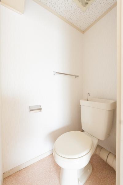 ラフォーレ四季 / R-10号室トイレ