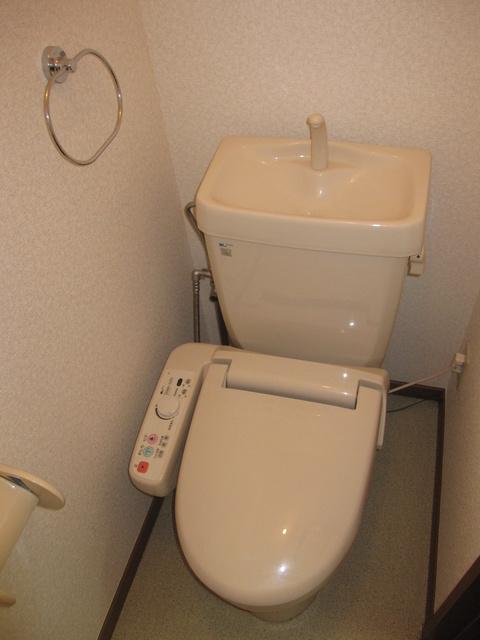 ライフコート篠原 / 306号室トイレ