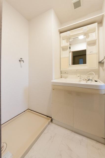リバーパーク梅林 / 105号室洗面所