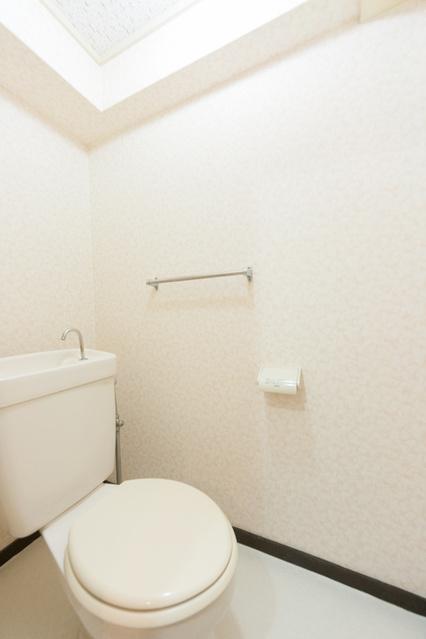 松田ハイツ / 305号室トイレ