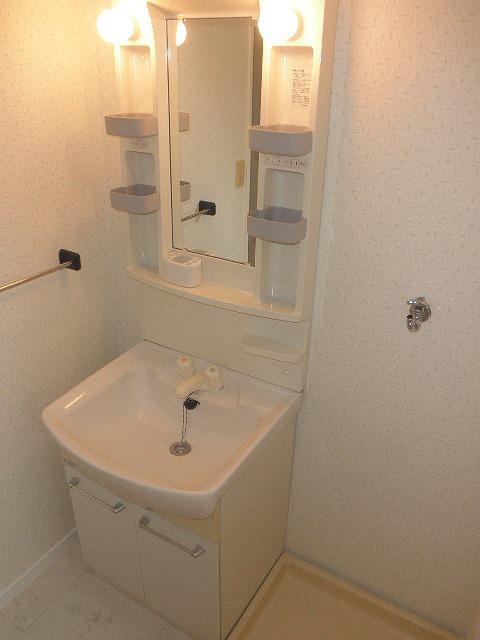 ロイヤルハウス天神2 / 402号室洗面所