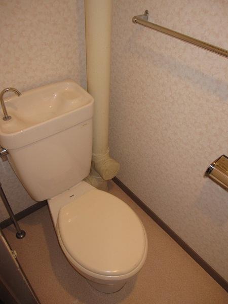 Roots城南 / 306号室トイレ