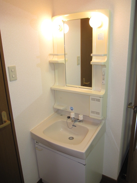 ライフコート篠原 / 306号室洗面所