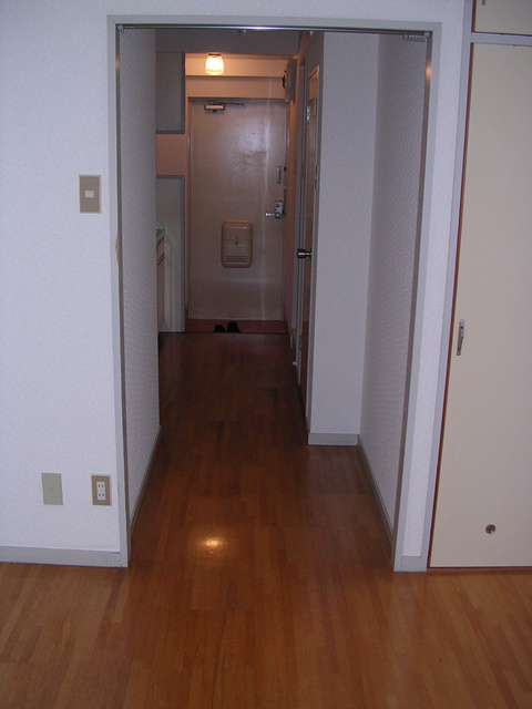 プラムハウス鳥飼 / 202号室玄関