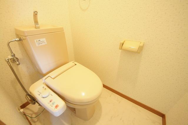 カサグランデ / 2-303号室トイレ