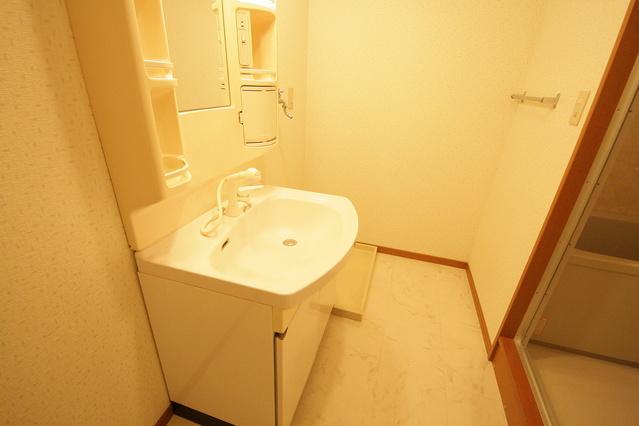 カサグランデ / 2-303号室洗面所