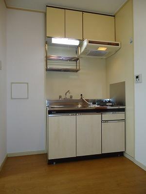 エクセレント岩瀬 / 206号室キッチン