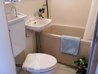 渡辺ハイツ / 202号室トイレ