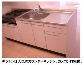 トラント・ドゥ博多 / 303号室キッチン