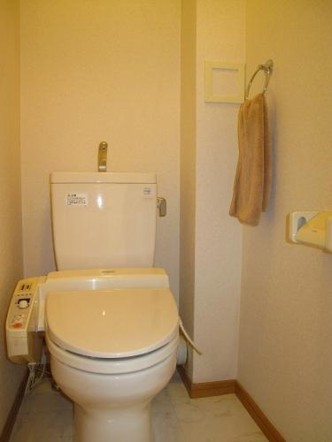 ローヤルマンション博多駅前 / 207号室トイレ