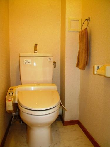 ローヤルマンション博多駅前 / 505号室トイレ