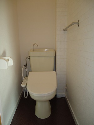 エクセレント岩瀬 / 401号室トイレ