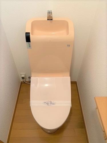 フロレスタ冷泉 / 501号室トイレ