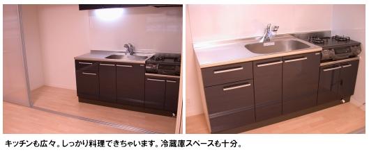トラント・ドゥ博多 / 505号室キッチン