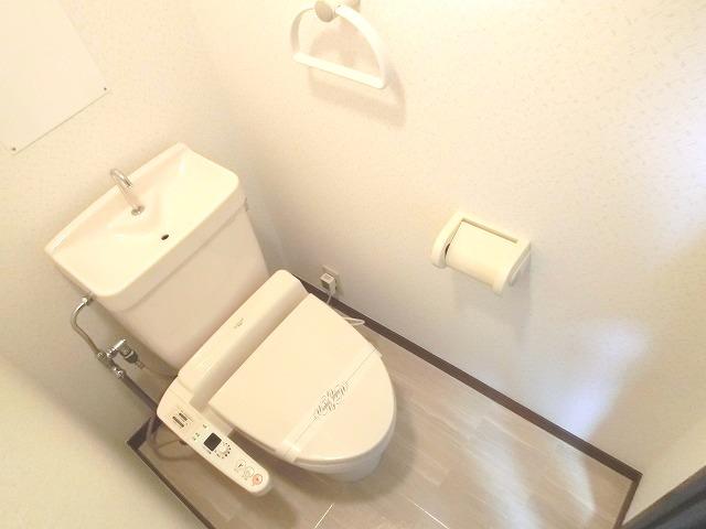 レジデンス秋山 / 302号室トイレ