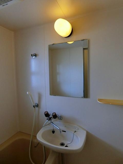エクセレント岩瀬 / 303号室洗面所