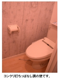 トラント・ドゥ博多 / 505号室トイレ