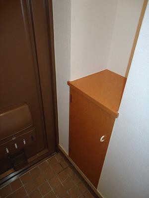 エクセレント岩瀬 / 203号室玄関