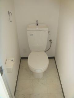 プレミール ホサカ / 302号室トイレ