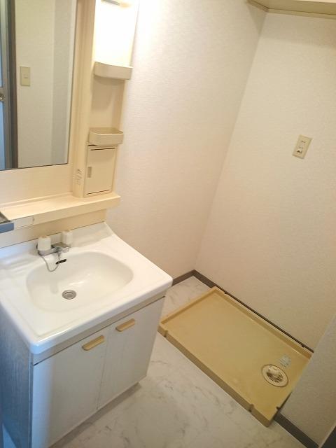 エクセレント百年橋 / 501号室洗面所