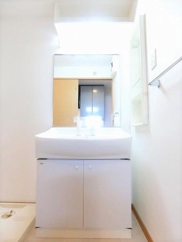 クラシカル大手門 / 405号室洗面所