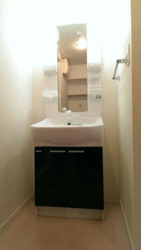 サン・ビオ渡辺通り / 401号室洗面所