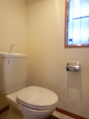 ユニティ美野島 / 501号室トイレ